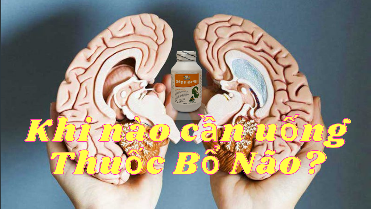 Khi nào cần uống thuốc bổ não?